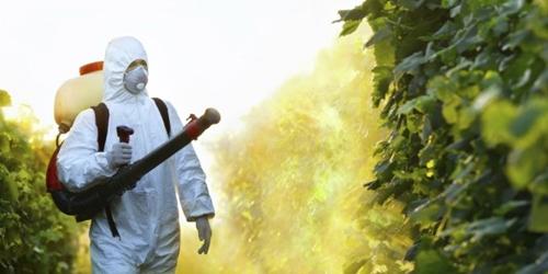 pesticida 1