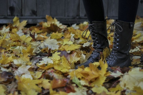 sapatos capa